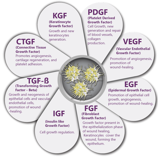Examples of growth factors in alpha granules of platelets